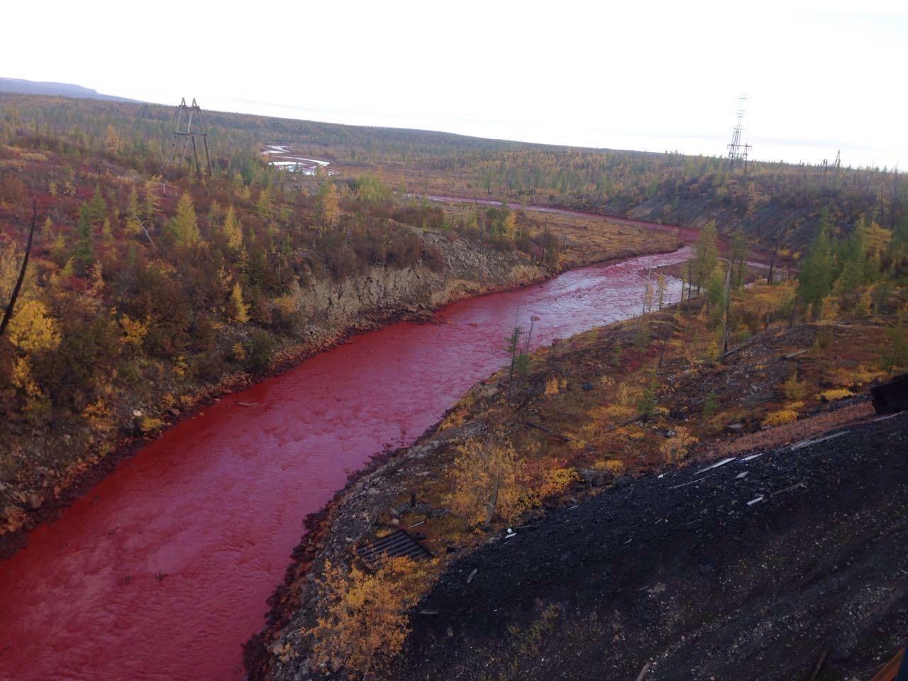 В реку Запорожской области сливают токсичные отходы: смотри фото ...